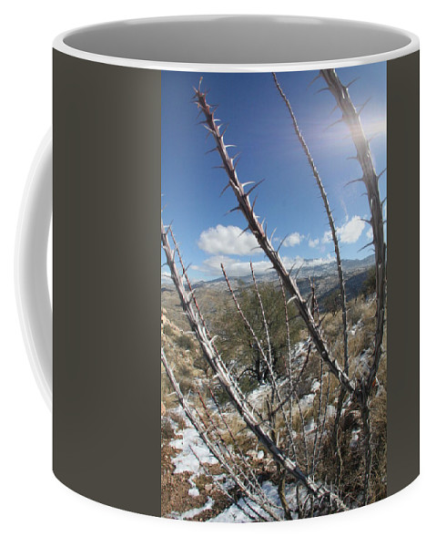 Snow Coffee Mug featuring the photograph Winter Thorns by David S Reynolds