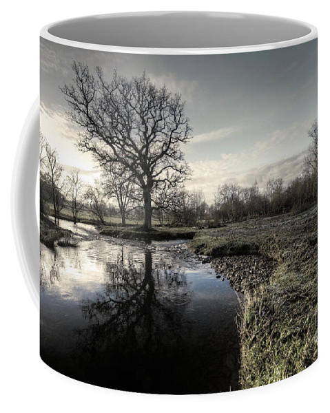 River Coffee Mug featuring the photograph Winter Tree On The River Culm by Rob Hawkins