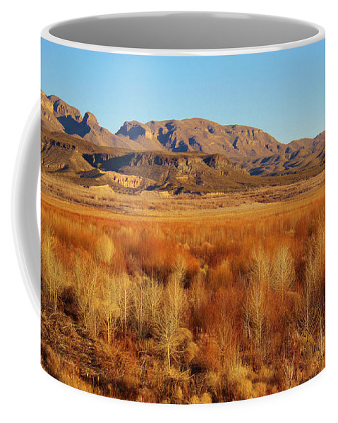 Roena King Coffee Mug featuring the photograph Winter Trees Landscape 1 by Roena King