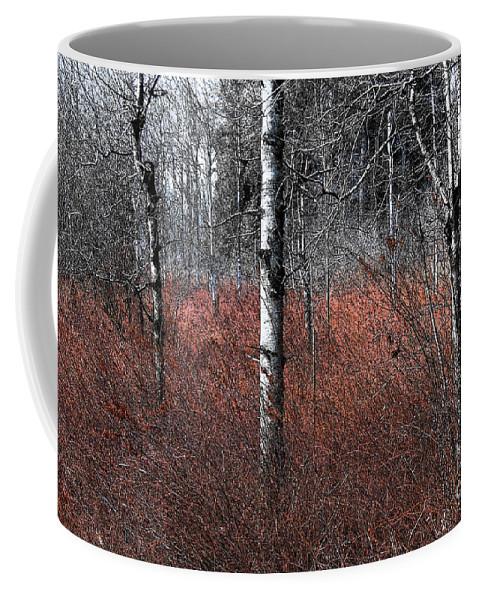 Wetland Coffee Mug featuring the photograph Winter Wetland I by Jani Freimann