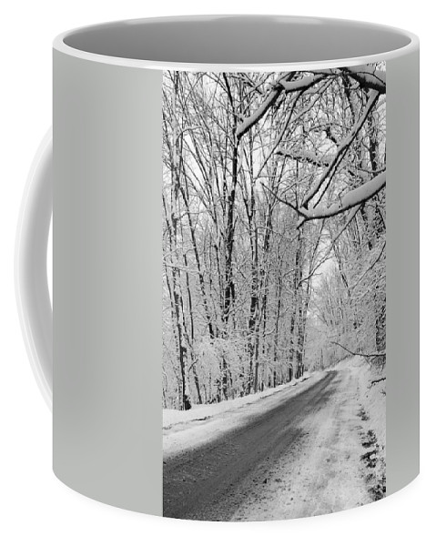Winter Coffee Mug featuring the photograph Winter White by Susan McMenamin
