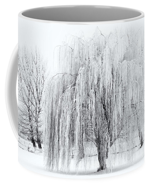 Willow Coffee Mug featuring the photograph Winter Willow by Mike Dawson
