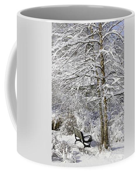 Winter Wonderland Coffee Mug featuring the photograph Winter Wonderland 9 by Allen Beatty