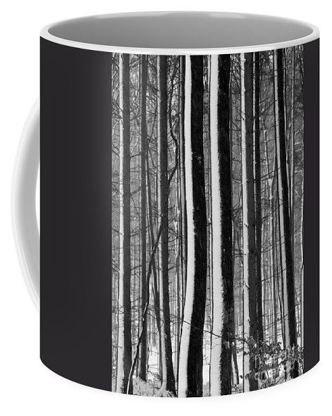 Heiko Coffee Mug featuring the photograph Winter Woodlands 2 by Heiko Koehrer-Wagner