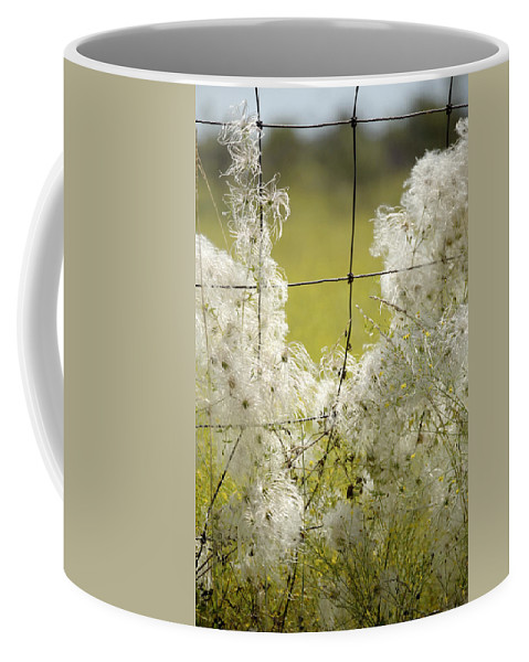 Wire Coffee Mug featuring the photograph Wire Weed 14432 by Jerry Sodorff