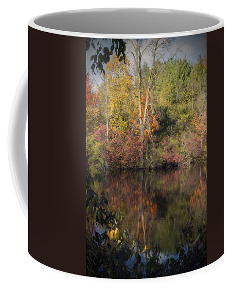 Fall Coffee Mug featuring the photograph Wisconsin Beauty by Jayne Gohr