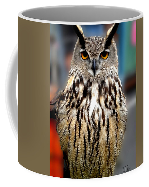 Colette Coffee Mug featuring the photograph Wise Forest Mountain Owl Spain by Colette V Hera Guggenheim