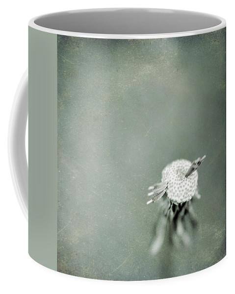 Dandelion Coffee Mug featuring the photograph Wishful Thinking by Trish Mistric