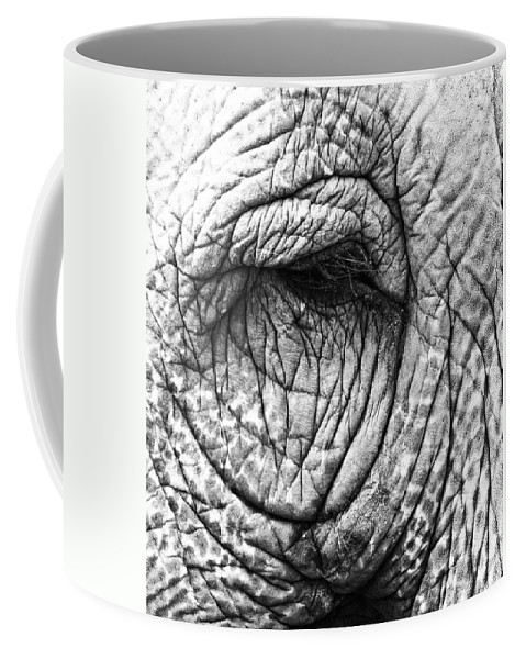 Elephant Coffee Mug featuring the photograph Wishing The Wild by The Artist Project