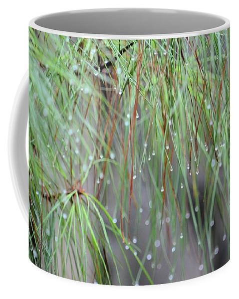 Wispy Winter Raindrops Coffee Mug featuring the photograph Wispy Winter Raindrops by Maria Urso