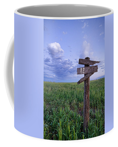 Farms Coffee Mug featuring the photograph Witch Way To Oz by James BO Insogna