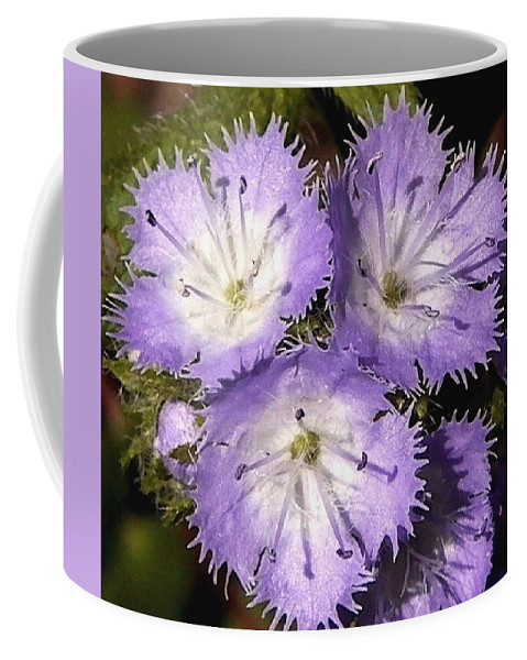 Flowers Coffee Mug featuring the photograph With Love - Passionate by Theresa Asher