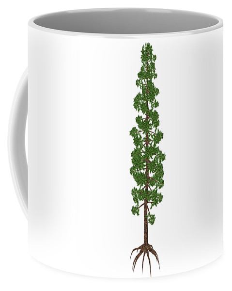 Tree Coffee Mug featuring the photograph Wollemia Nobilis Prehistoric Tree by Elena Duvernay