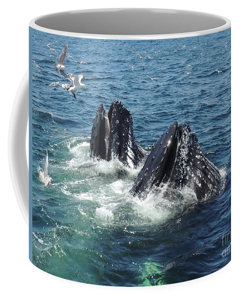 Nature Coffee Mug featuring the photograph Wonderment by Paul Smith