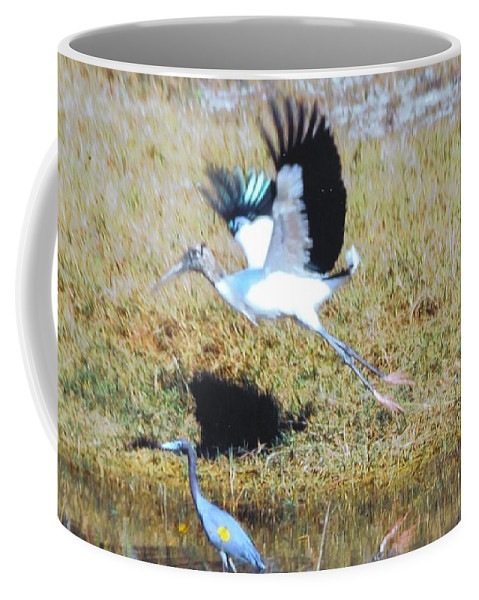 Taking Flight Coffee Mug featuring the photograph Wood Stork And Blue Heron by Robert Floyd