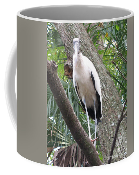 Wood Stork Coffee Mug featuring the photograph Wood Stork On A Limp by Christiane Schulze Art And Photography