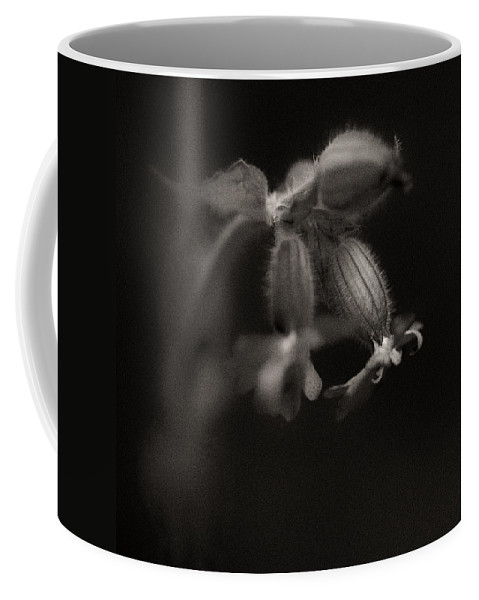 Woodland Coffee Mug featuring the photograph Woodland - Study 9 by Dave Bowman