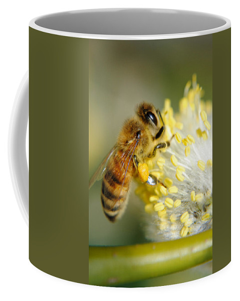 Bee Coffee Mug featuring the photograph Worker Bee by Frozen in Time Fine Art Photography