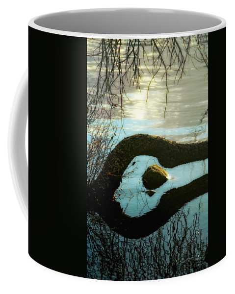 Water Coffee Mug featuring the photograph Would I by Donna Blackhall