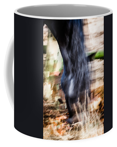 Horse Coffee Mug featuring the photograph Xengo by Edgar Laureano
