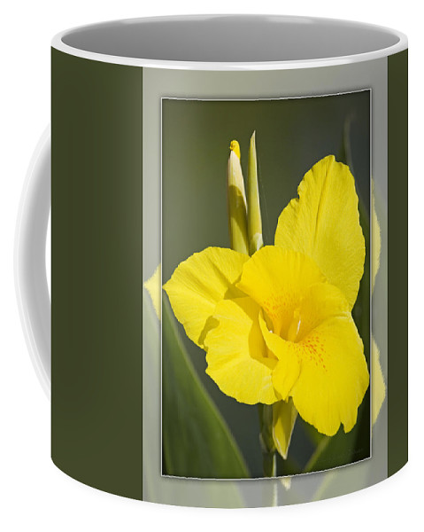 Yellow Coffee Mug featuring the photograph Yellow Canna by Walter Herrit