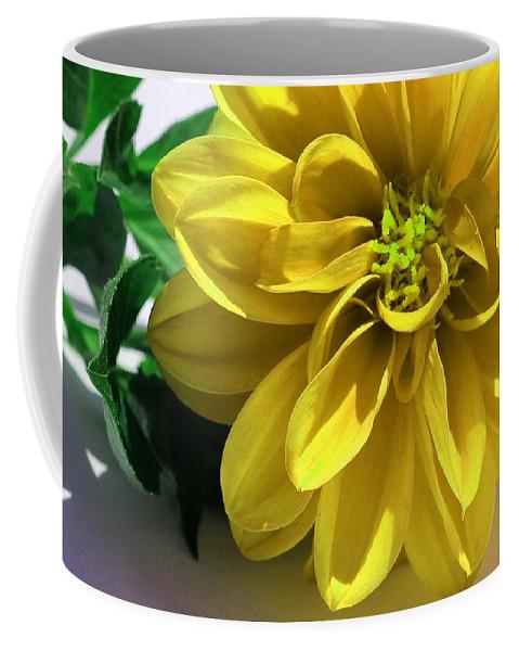 Yellow Dahlia Closeup Coffee Mug featuring the photograph Yellow Dahlia Closeup by Barbara Griffin