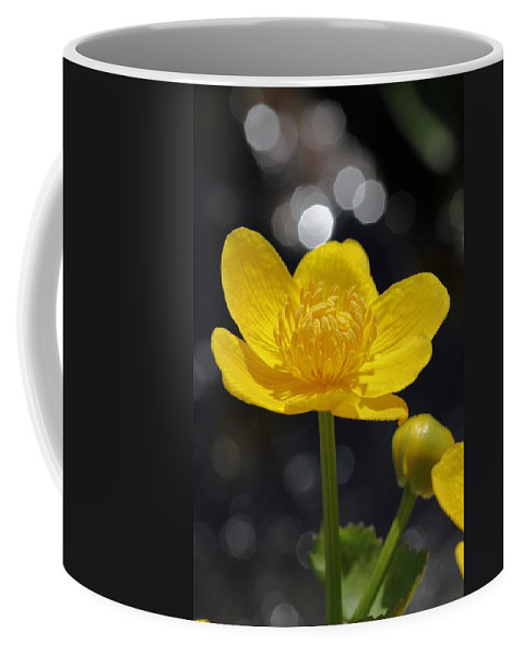 Marsh Marigold Coffee Mug featuring the photograph Yellow Delight by Doris Potter