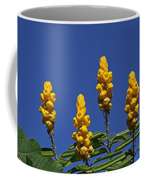 Flowers Coffee Mug featuring the photograph Yellow Flowers Against Blue Sky by Dart and Suze Humeston