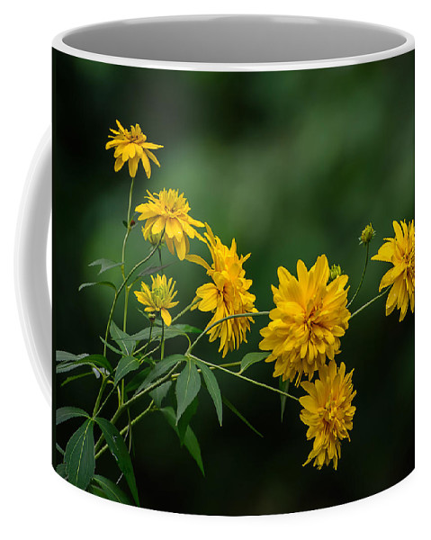 Flowers Coffee Mug featuring the photograph Yellow Flowers by Robert Mitchell