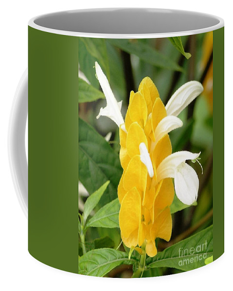 Mary Deal Coffee Mug featuring the photograph Yellow Ginger Blossom by Mary Deal