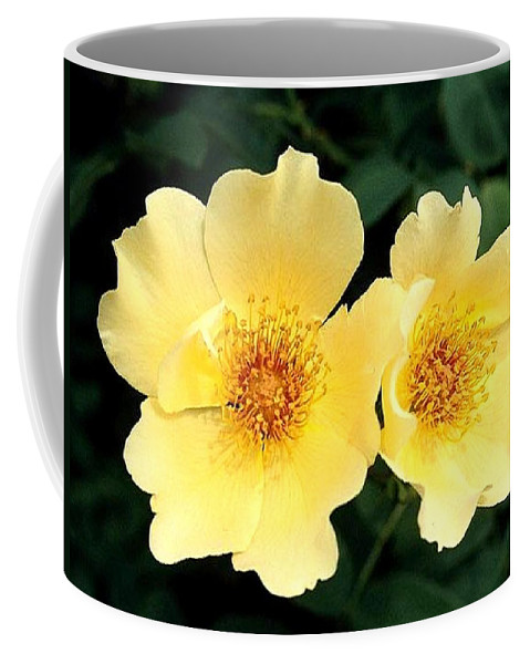 Flower Coffee Mug featuring the photograph Yellow Hybiscus by Jay Milo
