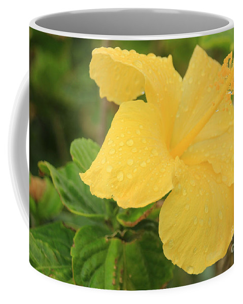 Yellow Coffee Mug featuring the photograph Yellow by Kris Hiemstra