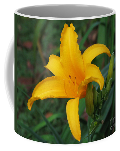 Yellow Coffee Mug featuring the photograph Yellow Lily by Mini Arora