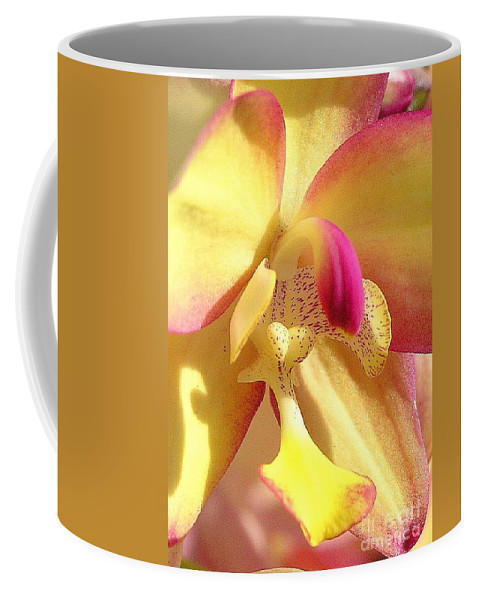 Yellow Coffee Mug featuring the photograph Yellow Pink Orchid by Mary Deal