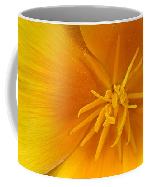 Poppy Coffee Mug featuring the photograph Yellow Poppy by Dave Mills