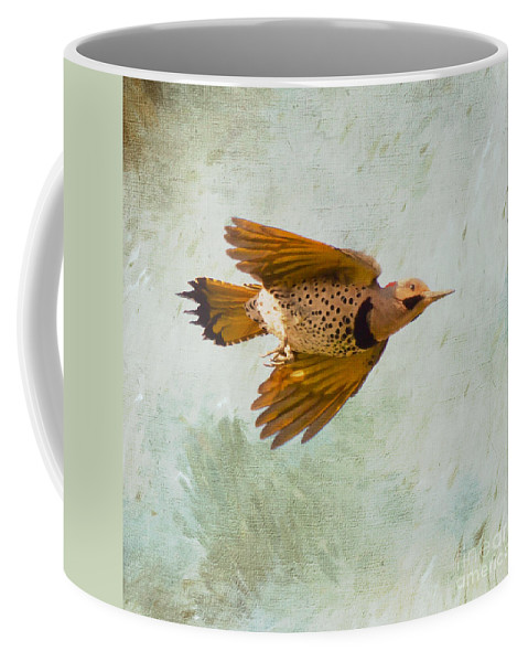 Yellow-shafted Northern Flicker Coffee Mug featuring the photograph Yellow-shafted Northern Flicker In Flight by Kerri Farley