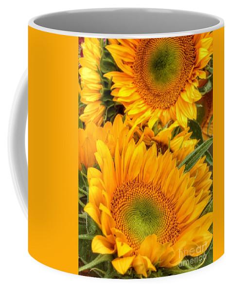 Yellow Sun Flower Coffee Mug featuring the photograph Yellow Sun Flower Burst by Susan Garren