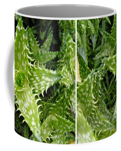 Stereo Coffee Mug featuring the photograph Young Aloe In Stereo by Duane McCullough