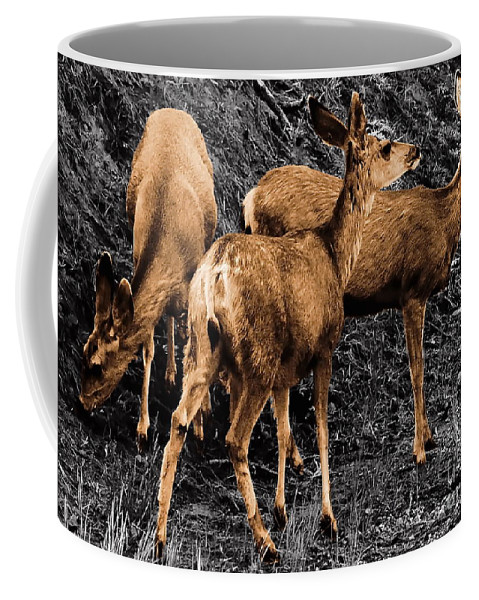 Digital Selective Color Photo Coffee Mug featuring the digital art Young And Hungry Sc by Tim Richards