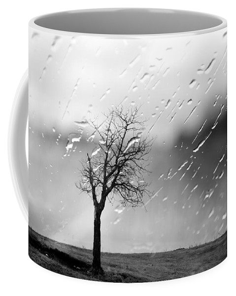 Tree Coffee Mug featuring the photograph Your Tears I Root by The Artist Project