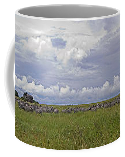 Zebras Coffee Mug featuring the photograph Zebra Panorama - 12x64 by J L Woody Wooden