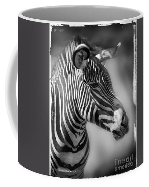 Zebra Coffee Mug featuring the photograph Zebra Profile In Black And White by Jill Battaglia