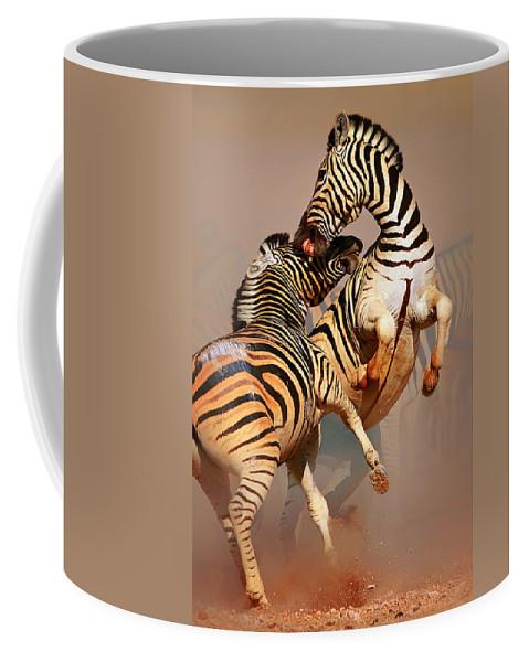 Wild Coffee Mug featuring the photograph Zebras fighting by Johan Swanepoel