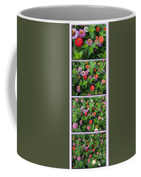 Floral Coffee Mug featuring the photograph Zinnias 4 Panel Vertical Composite by Thomas Woolworth