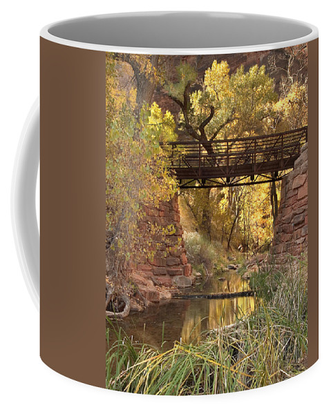 3scape Coffee Mug featuring the photograph Zion Bridge by Adam Romanowicz