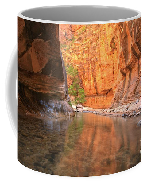 Zion Narrows Coffee Mug featuring the photograph Zion Narrows Bend by Adam Jewell