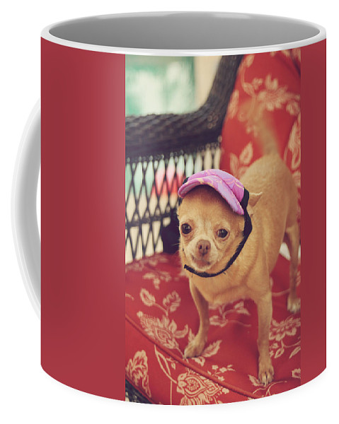 Dogs Coffee Mug featuring the photograph Zoe's Visor by Laurie Search