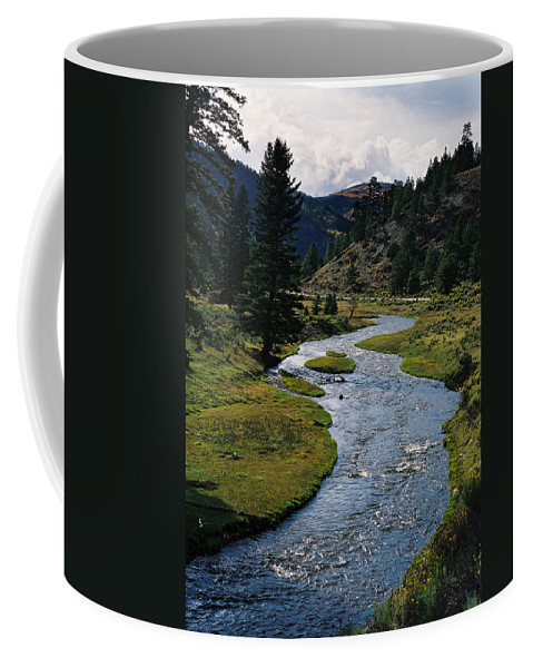 Costilla Creek Coffee Mug featuring the photograph Costilla Creek In Fall by Ron Weathers