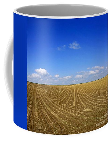 Agricultural Landscape Coffee Mug featuring the photograph Agricultural Landscape by Bernard Jaubert