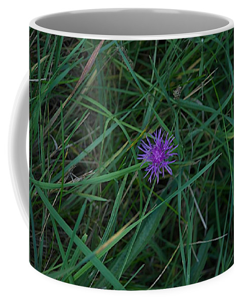 Bni Coffee Mug featuring the photograph Alone by Joseph Yarbrough